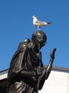 Seagull on Ghandi's head. The Ferry Building, San Francisco